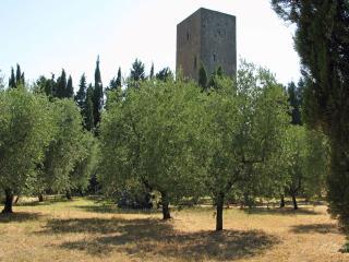 Torre del Merlo - Montecatini Val di Cecina vacation rentals