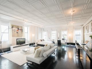 Stunning and Stylish Loft - New York City vacation rentals