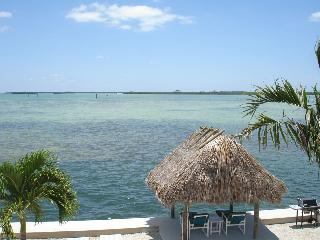 Open Water is Only 42 Feet From Your  Front Door ! - Little Torch Key vacation rentals