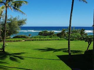 Kaha Lani 213: Wailua Bay view 2br/2ba on the Coconut Coast, at Lydgate Park - Lihue vacation rentals