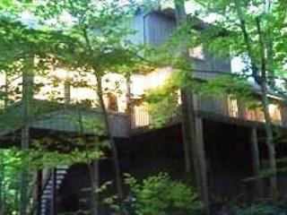 7/1605/16 109097 - Image 1 - Pocono Lake - rentals