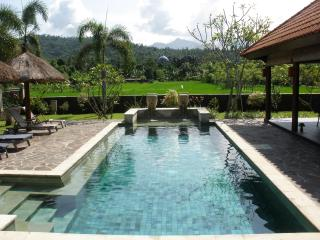 Villa Bale Solah:3 bedrooms/bathrooms,private pool - Batu Layar vacation rentals