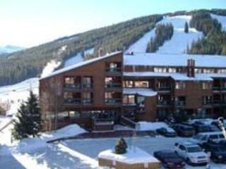 Fox Pine Lodge ~ RA4988 - Image 1 - Copper Mountain - rentals