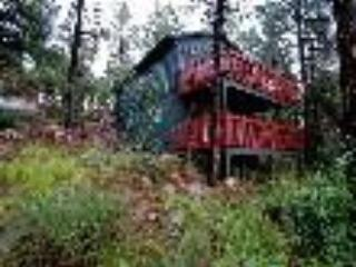 Gorgeous Cabin in the Pines - Gorgeous Cabin in the Pines - Prescott - rentals