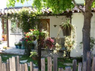 Detached Studio Apartment in Carmel - Pet Friendly - Carmel vacation rentals