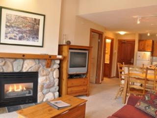Fireside Lodge Village Center - 419 - Sun Peaks vacation rentals