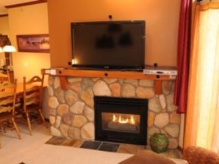 Fireside Lodge Village Center - 409 - Sun Peaks vacation rentals