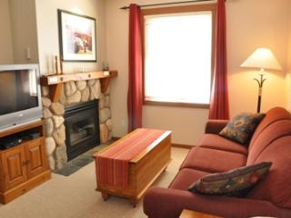 Fireside Lodge Village Center - 203 - Sun Peaks vacation rentals