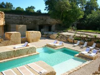 Luxury home w/pool Bordeaux & Saint Emilion area - Naujan-et-Postiac vacation rentals