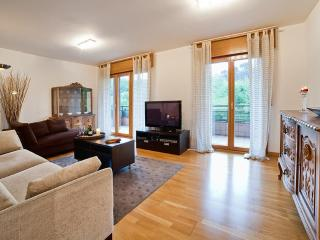 Beautiful 4 bedroom apartment. Free WiFi & Garage - Basque vacation rentals
