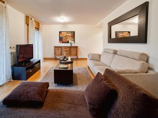 Beautiful 4 bedroom apartment. Free WiFi & Garage - San Sebastian - Donostia vacation rentals
