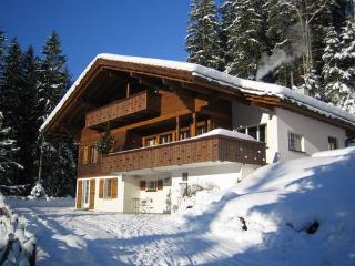 Chalet Ave, 2 flats (sleeps 9 and 4 persons) - Grindelwald vacation rentals