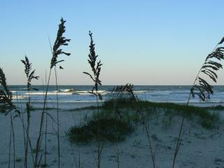 Oceanfront Gem with Expansive Views - New Smyrna Beach vacation rentals