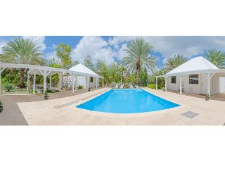 GREYSTONE...beautiful French Caribbean-style villa surrounded by lush tropical gardens - Terres Basses vacation rentals