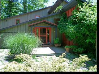 Catskills Mountain Retreat - Phoenicia, NY - Phoenicia vacation rentals