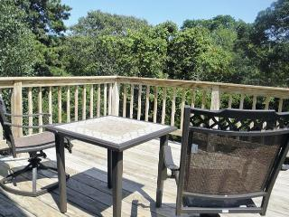 Eastham Near National Seashore~ Private Pet Friendly location! - Eastham vacation rentals