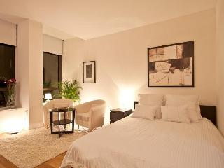 Stylish & Spacious Luxiry Studio - New York City vacation rentals