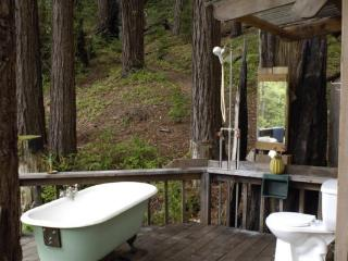 $ 155 Big Sur Getaway - Big Sur vacation rentals