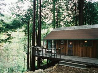 Nice Cabin with Deck and Internet Access - Big Sur vacation rentals