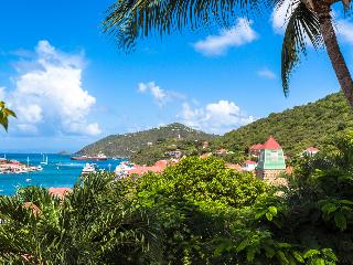 Perfect Villa with A/C and Microwave - Gustavia vacation rentals