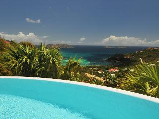 Les Lataniers (REL) - Saint Barthelemy vacation rentals