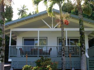 Charming House with Deck and Internet Access - Hilo vacation rentals