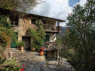 Megge Manor House - Liguria vacation rentals