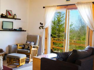 Cute and Cozy Cabin Close to Acadia National Park! - Bar Harbor vacation rentals