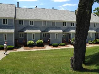 White Mountain Condo Near Storyland & Attitash - Bartlett vacation rentals