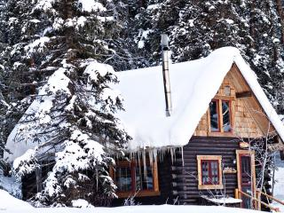 Cabin #7 Ohbejoyful near Crested Butte/inside NF - Crested Butte vacation rentals