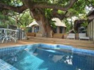 plunge pool and spacious decks - Vanuatu Glamping- Beach luxury at Hidden Cove - Luganville - rentals