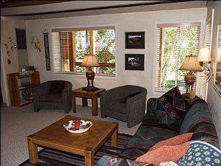 Close to new Base Village - Walk to Restaurants and Shops (1311) - Snowmass Village vacation rentals