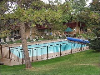 Great Value in the Village! - Steps from lifts, restaurants, and shops (2248) - Snowmass Village vacation rentals