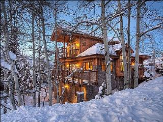 Beautiful new construction - High end finishes (9515) - Snowmass Village vacation rentals