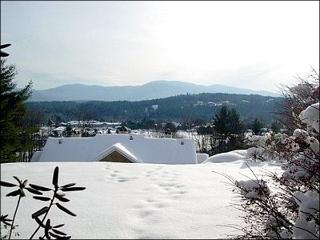 Comfortable condo with Nice Views - Minutes from the Slopes, the Village and all of the Fun Stowe has to Offer (3026) - Eden Mills vacation rentals