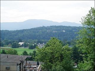 Close to the Golf Course - A Modern Condo with Great Amenities (3104) - Stowe vacation rentals
