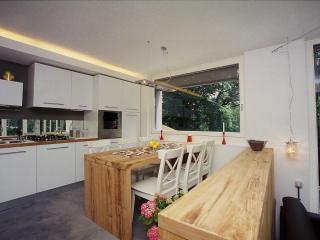 Romantic accomodation in the heart of woods - Brunate vacation rentals