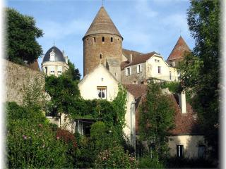 Charming House with Internet Access and Water Views - Semur-en-Auxois vacation rentals