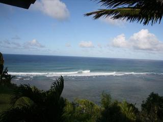 Convenient Condo with Deck and Microwave - Princeville vacation rentals