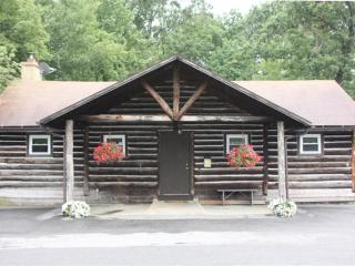 Black Moshannon Lodge,  near Penn State University - Bellefonte vacation rentals