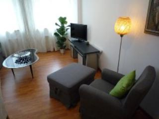 Vacation Apartment in Detmold - 517 sqft, renovated, central, newly furnished (# 3400) - Porta Westfalica vacation rentals