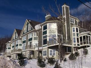 Boise | 160-6 - Mont Tremblant vacation rentals