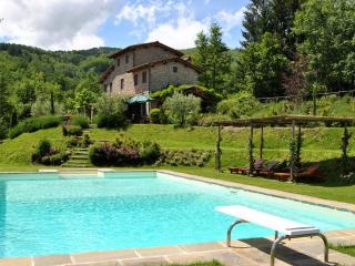 Lovely house near LUCCA/FLORENCE w/ beautiful view - Pescia vacation rentals