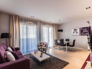 2 bedroom apartment in heart of Barcelona - Barcelona vacation rentals