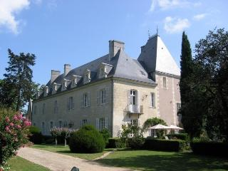 Chateau de Loire + Coach House Chateau rental in Loire valley - Rent this chateau in the Loire with Rentavilla.com - Chaveignes vacation rentals