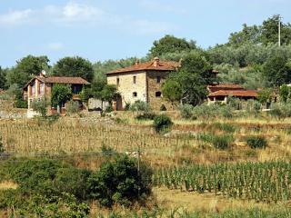 Valdarno - Casa Loggia Villa rental in Pergine Valdarno - Tuscany - Rent this - Pergine Valdarno vacation rentals