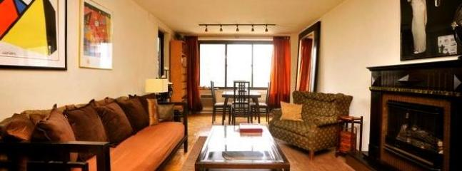 Large1Bedoorm Apt. - Terrace and Central Park View - Image 1 - New York City - rentals