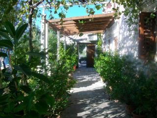 VILLA WITH PRIVATE BEACH - 2 BEDROOMS APARTMENT - Trsteno vacation rentals