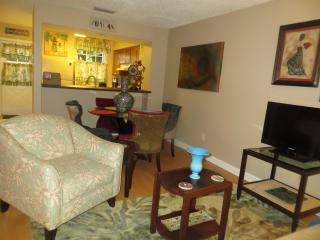 Minutes To USF, Theme Parks and Convention Center - Tampa vacation rentals