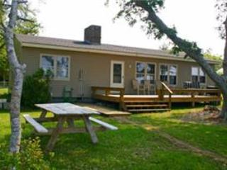 3 bedroom House with Internet Access in Newport - Newport vacation rentals